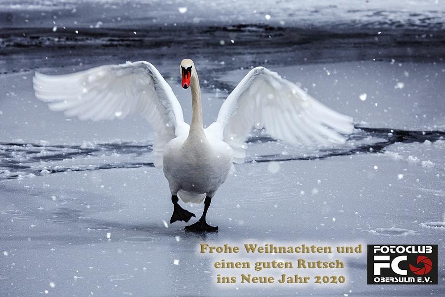 """Fotoclub Obersulm e.V. wünscht allen Freunden und Bekannten: """"Frohe Weihnachten und einen guten Rutsch ins neue Jahr 2020"""""""