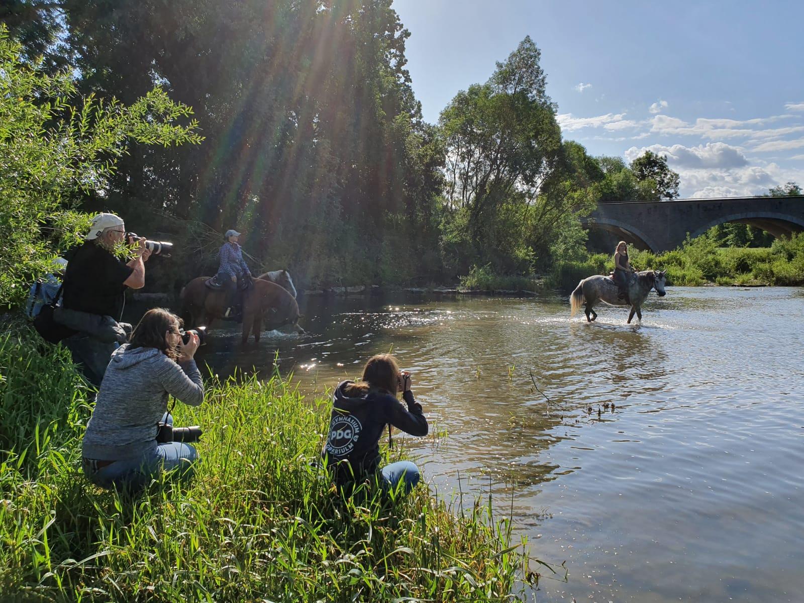 Pferde-Shooting als Fotoclub-Workshop auf dem Pferdehof in Neuenstadt-Kochertürn
