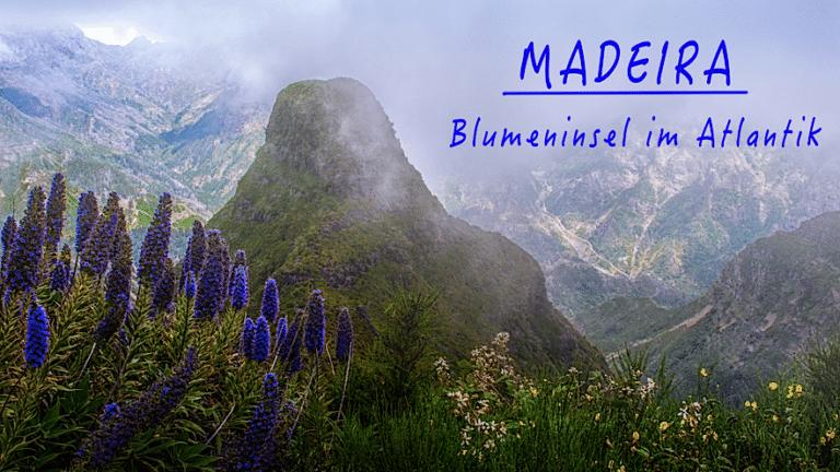 Eine herrliche Blumeninsel im Atlantik präsentieren Irmgard und Karl-Heinz Waffenschmid