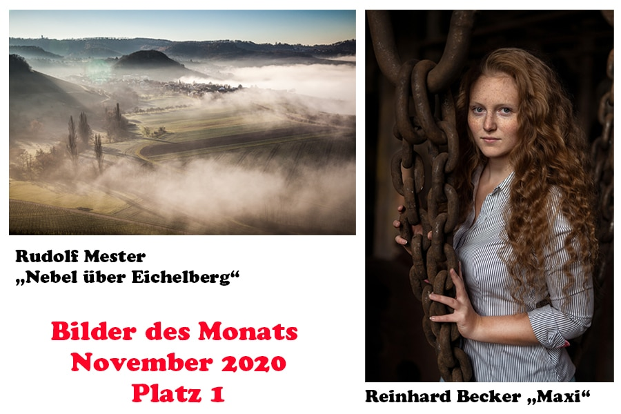 Bilder des Monats November 2020 – Wahl per Videokonferenz: Punktegleichheit bei Platz 1: Rudolf Mester und Reinhard Becker, Platz 2: Heide Röger, Platz 3: Rudolf Mester